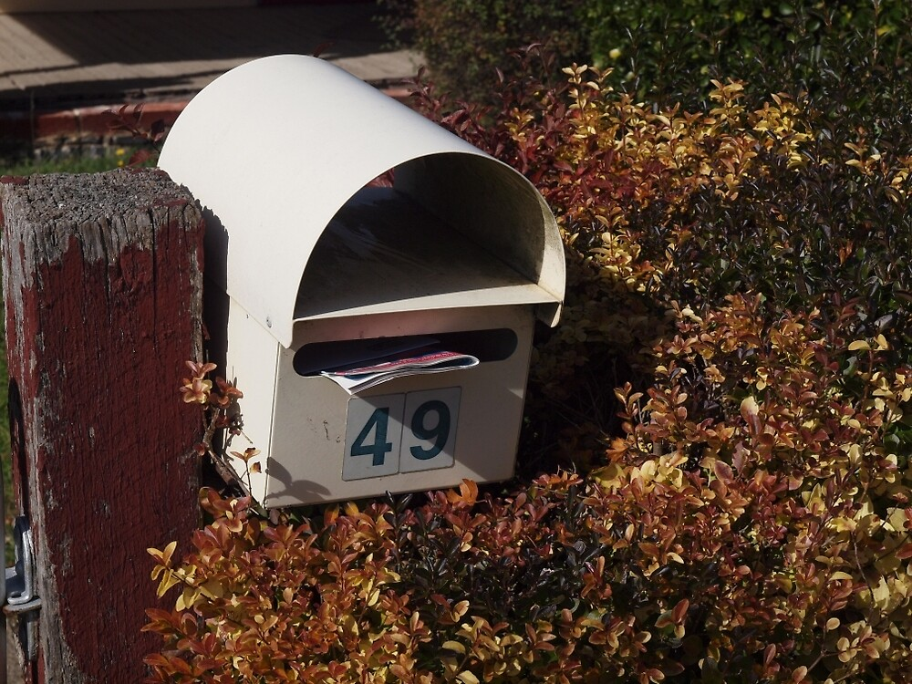 Hedge Mail by Tom McDonnell