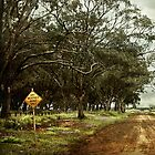 Dry weather road by scottimages