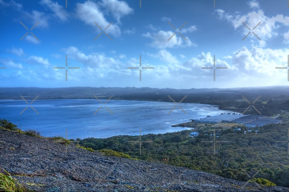 Albany from Mt. Melville, Western Australia #3 by Elaine Teague