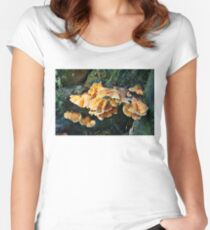 Colorful Fungus Women's Fitted Scoop T-Shirt