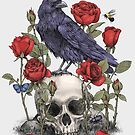 Memento Mori  by Terry  Fan