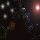 Space Nesting by Heidi Foreman