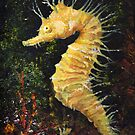 Seahorse by Maureen Whittaker