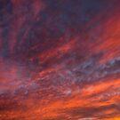 Heavenly Glow by amydaggett