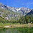 Alpine Landscape by RedHillDigital