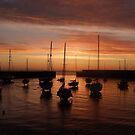 Bray Harbour first light von Aoife McNulty