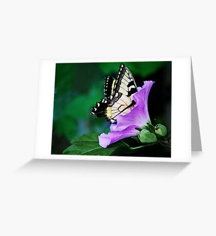 Knee-deep In Nectar... Greeting Card