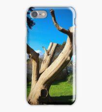 Crag iPhone Case/Skin