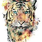 Tiger III by RIZA PEKER