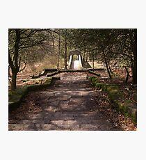 Rivington Gardens Photographic Print