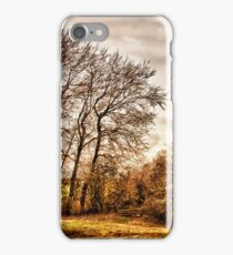Countryside Ramblings iPhone Case/Skin
