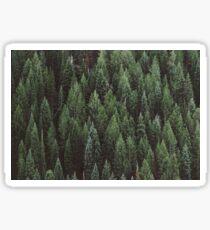 Pine Ocean Sticker