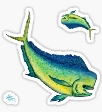 """Mahi Mahi Splash"" ~ watercolor & ink art by Amber Marine Sticker"