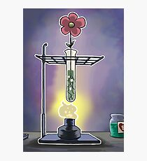 Bunsen Burner Flower Pot Photographic Print