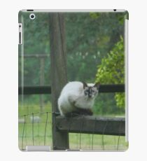 Cat on a Fence Post iPad Case/Skin