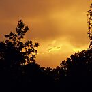 Stormy Skies at Sunset by Ann Allerup