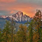 Alaska the beautiful by Leon Heyns