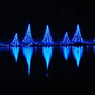 Blue Light Reflections by Rodney Lee Williams