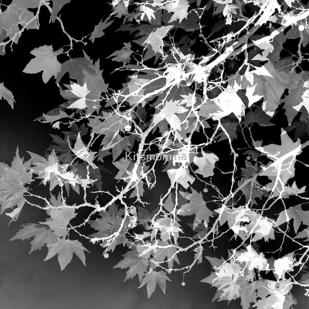 Electric Shadows by Kitsmumma