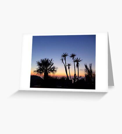 Majorcan Palms At Sunset Greeting Card