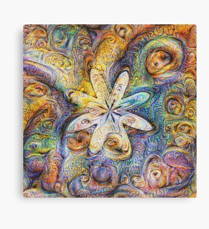 Eight armed starfish #DeepDream Canvas Print