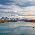 Swan Lake by Linda Cutche
