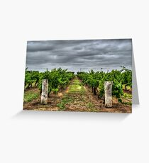 Coonawarra Vineyard Greeting Card