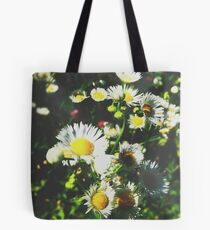 Daylight Daisies  Tote Bag