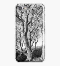 Tynningham Beeches iPhone Case/Skin