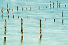 Poles in the lake by Patrick Morand