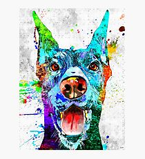 Doberman Pinscher Grunge Photographic Print