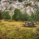No picnic today by Clare Colins