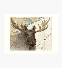 Moose Animal Maine Cathy Peek Nautical Chart Map Art Print
