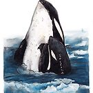Orca and Baby (Killer Whale) by Meaghan Roberts