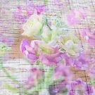 Pastel Petals on Wood by Susan Werby