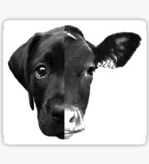 Speciesism Cow Dog Split Face Sticker