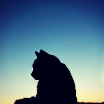 Cat Power  by Kaitbrooks35