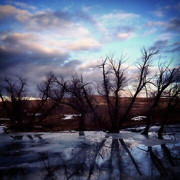 Ice Reflection by Kaitbrooks35