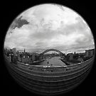 Journey to Newcastle  by Sarah Horsman