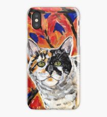 Coolio Calico  iPhone Case/Skin