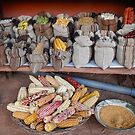 Plant varieties used for dying Lama wool in the Peruvian Andes by David Galson