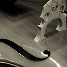 Double Bass by Avalinart