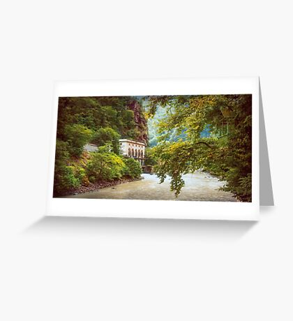 Valley of Trees Greeting Card