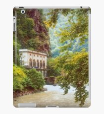Valley of Trees iPad Case/Skin