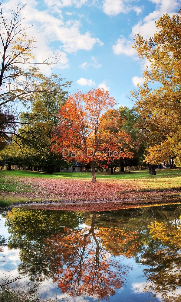 Reflection of Fall by Dan Dexter