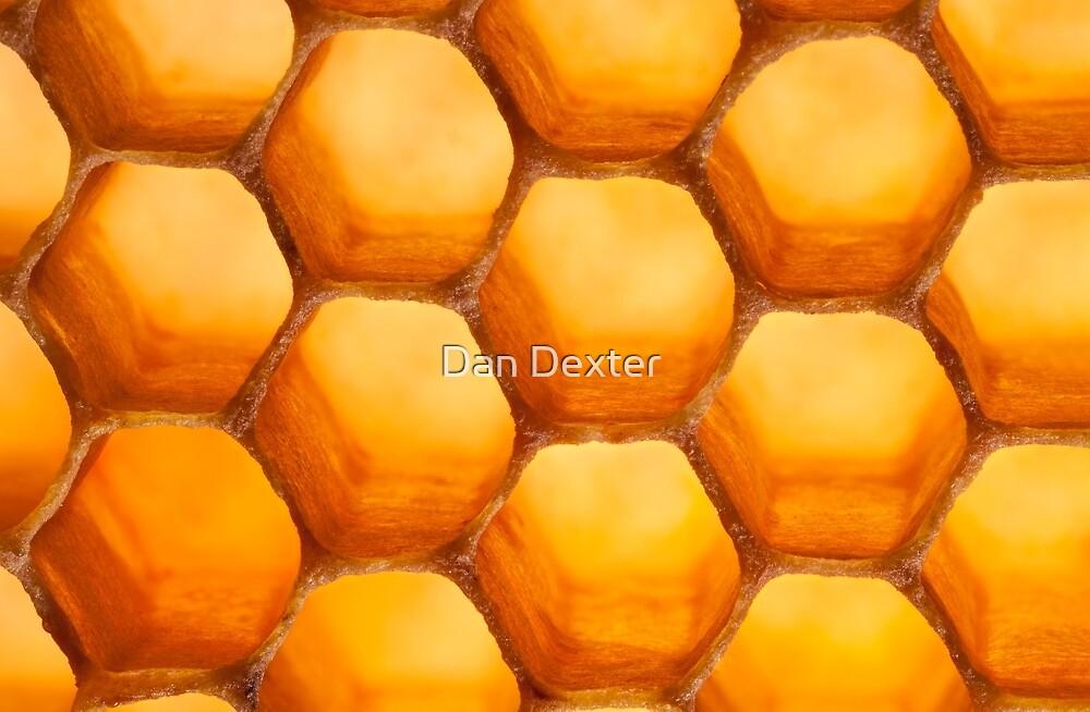 Golden Honeycomb by Dan Dexter