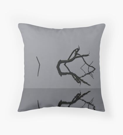 Adrift in Fog, without Direction Throw Pillow