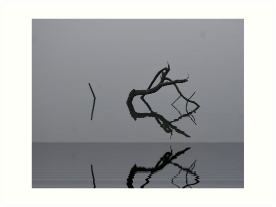 Adrift in Fog, without Direction by Barry Doherty