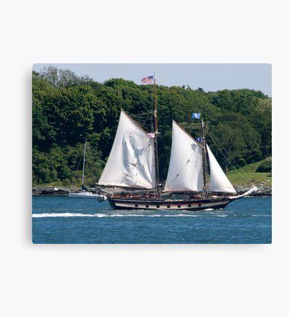 Tall Ship Sailing Past Newport, RI Canvas Print