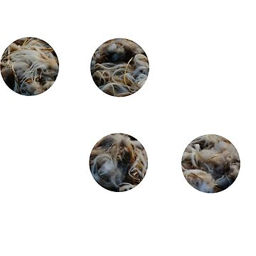 circles of wool by zenha